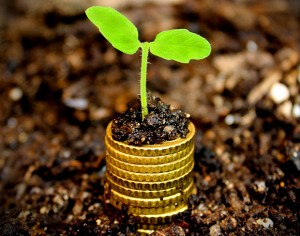 Money growth concept - Coins in the soil with young plant